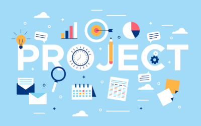 Problem Solving/Project Management